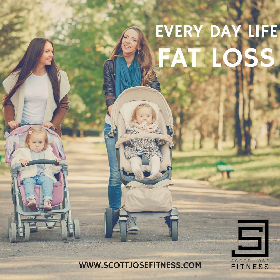 Every Day Life Fat Loss